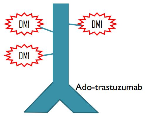 Kadcyla Antibody Conjugate in Breast cancer