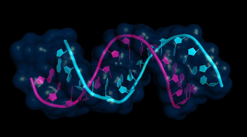 Epigenetic and cancer